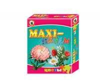 MAXI пазлы. Цветы