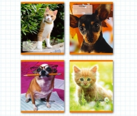 "Тетрадь общая ""Кошки и собаки"" 948 л., А5, кл., 4 вида)"