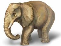 """Раскраска объемная """"Африканский слон""""  (Вокруг света)"""